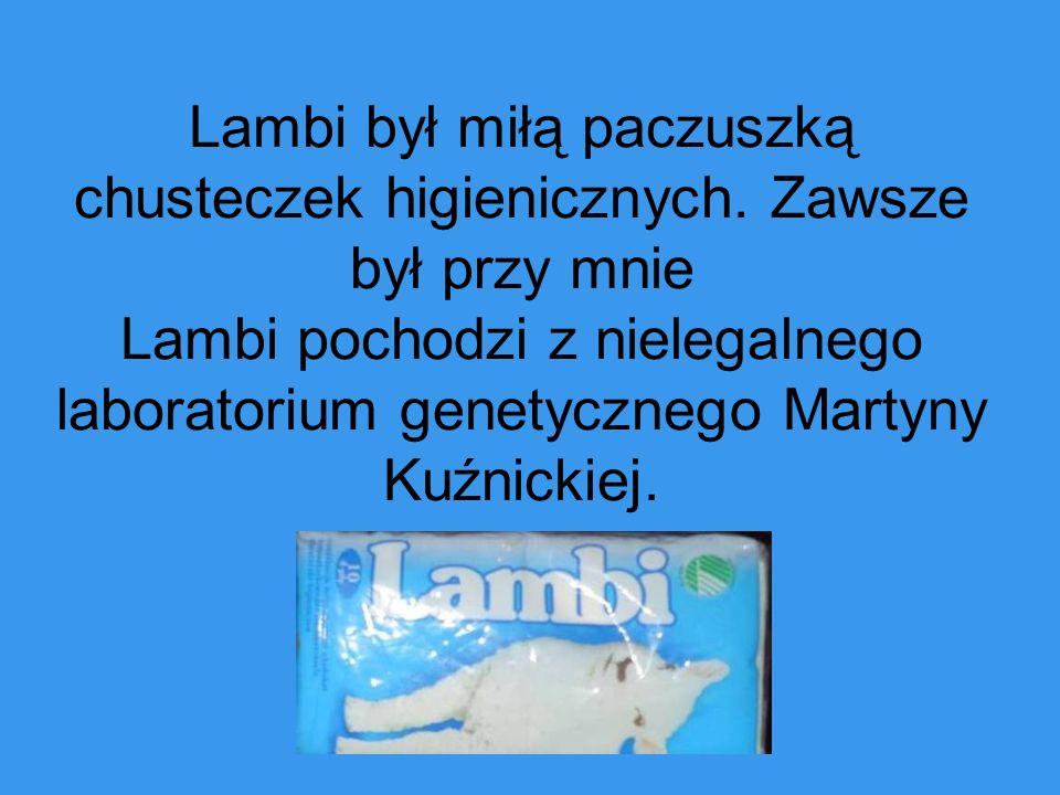Lambi był miłą paczuszką chusteczek higienicznych. Zawsze był przy mnie Lambi pochodzi z nielegalnego laboratorium genetycznego Martyny Kuźnickiej.
