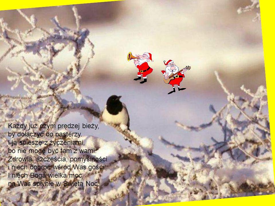Niech te Święta tak wspaniałe będą całe jakby z bajek, Niechaj gwiazdka z nieba leci, niech Mikołaj tuli dzieci, Biały puch niech z góry spada niechaj piesek w nocy gada, Niech choinka pachnie pięknie no i radość będzie wszędzie!