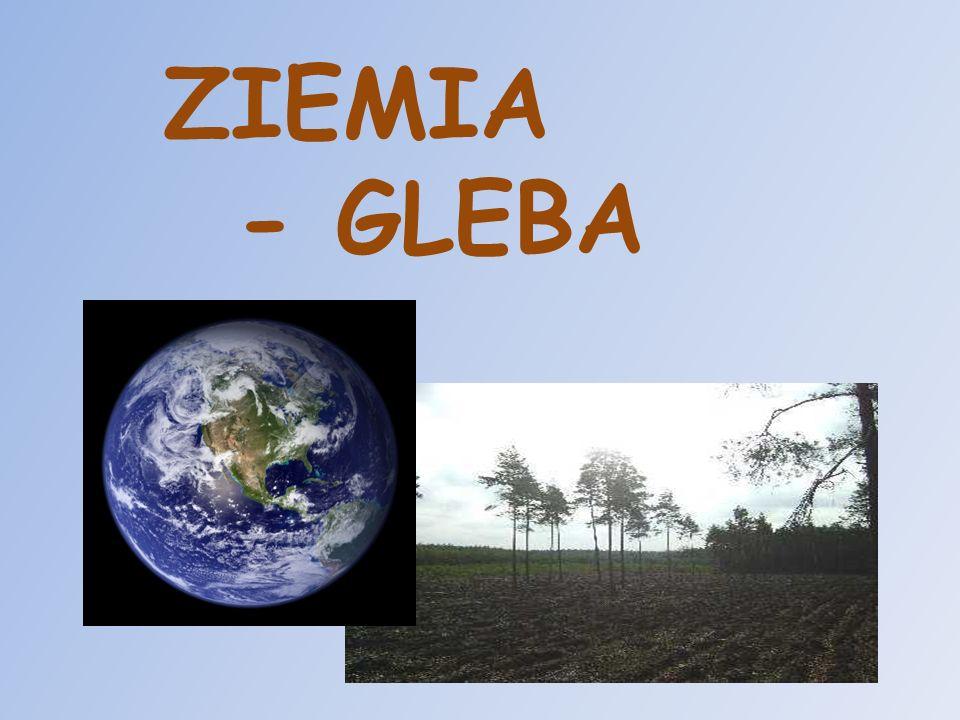ZIEMIA - GLEBA