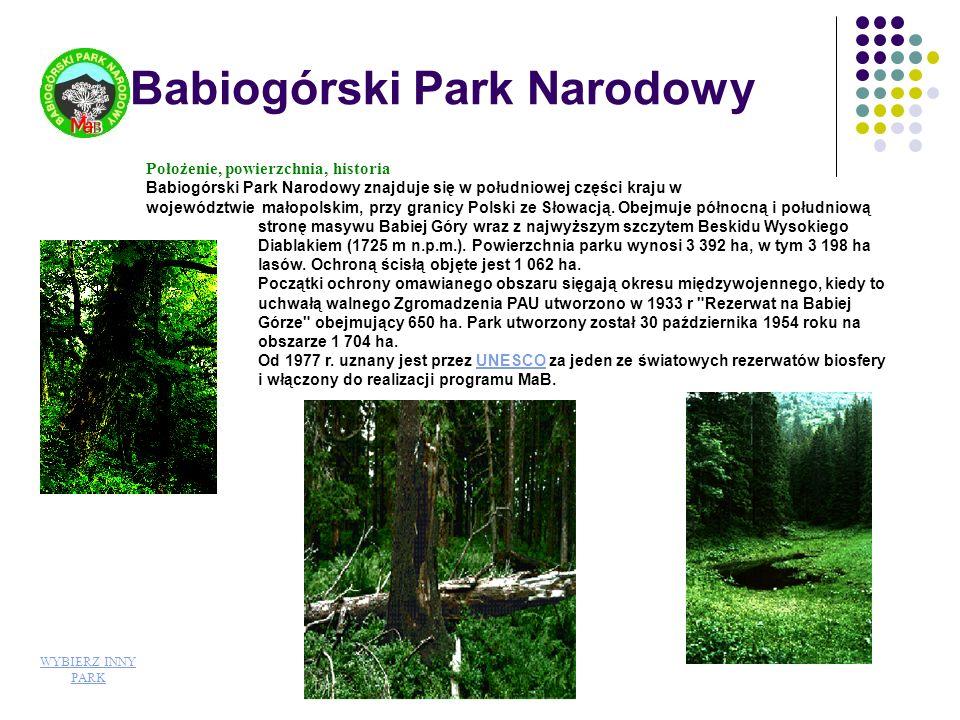 Roślinność Flora naczyniowa Parku liczy około 750 gatunków, w tym liczne górskie (m.in.