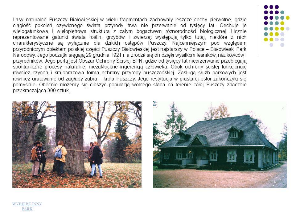 Rangę Białowieskiego Parku Narodowego podkreśla uznanie go przez UNESCO za Światowy Rezerwat Biosfery, wpisanie na listę Dziedzictwa Światowego, a w ostatnim czasie przyznanie Dyplomu Europy.