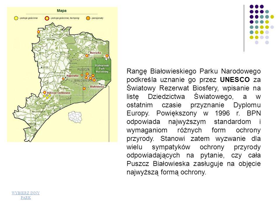 Biebrzański Park Narodowy <- Kładka dydaktyczna wiedzie do rezerwatu ścisłego Czerwone Bagno będącego ostoją łosia.