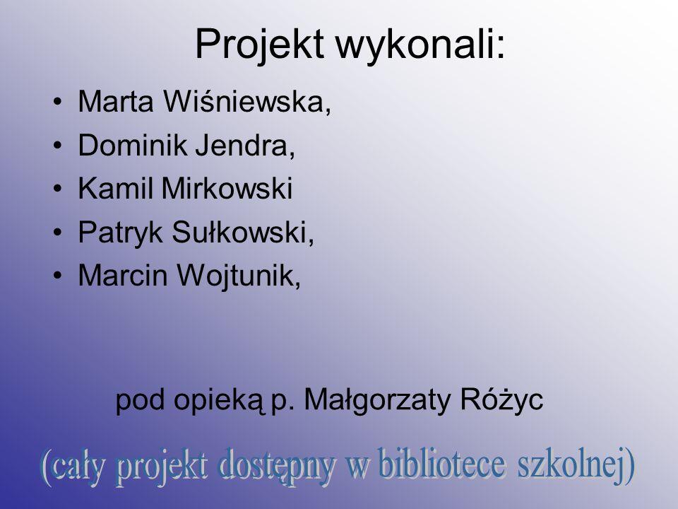 Projekt wykonali: Marta Wiśniewska, Dominik Jendra, Kamil Mirkowski Patryk Sułkowski, Marcin Wojtunik, pod opieką p.