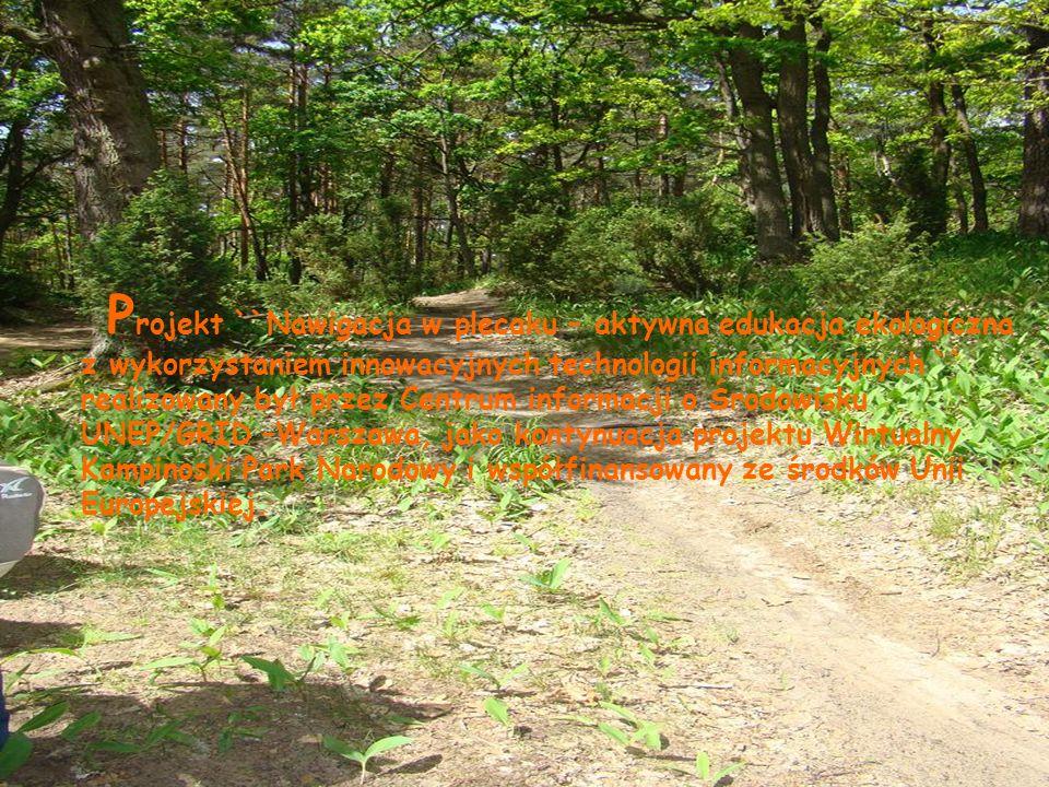 U czniowie w czasie wpisywania zebranych informacji na stronie Wirtualny Kampinoski Park Narodowy.
