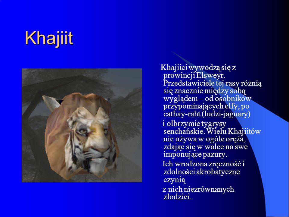 Khajiit Khajiici wywodzą się z prowincji Elsweyr.