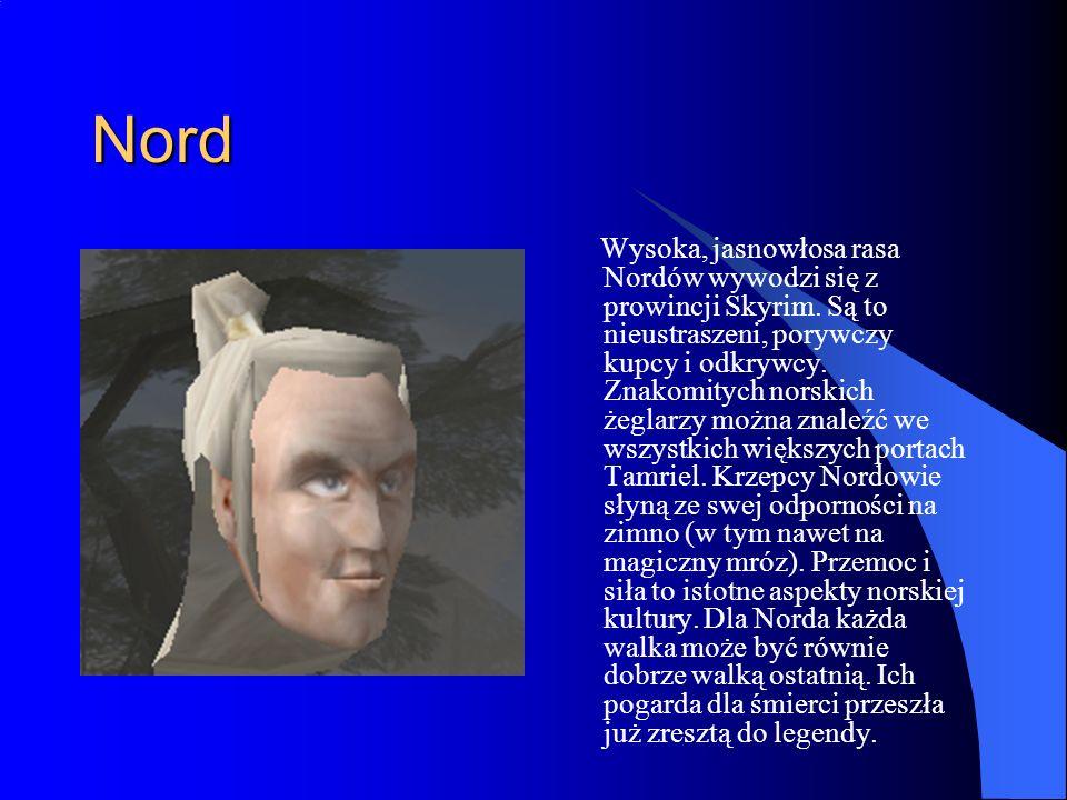 Nord Wysoka, jasnowłosa rasa Nordów wywodzi się z prowincji Skyrim.