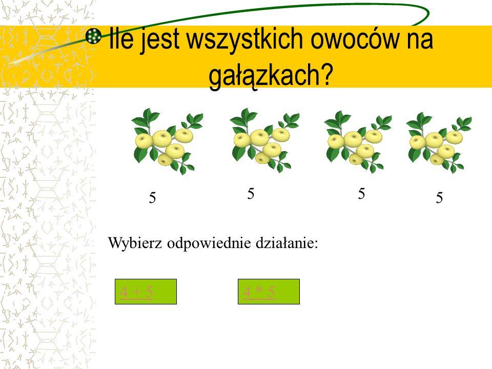 Ile jest wszystkich owoców na gałązkach? 5 55 5 Wybierz odpowiednie działanie: 4 + 54 * 5