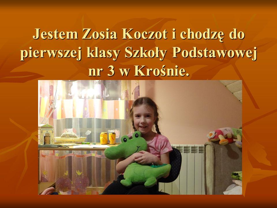 Jestem Zosia Koczot i chodzę do pierwszej klasy Szkoły Podstawowej nr 3 w Krośnie.