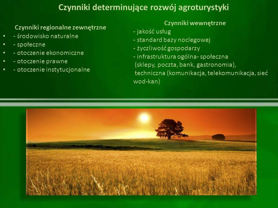 Czynniki regionalne zewnętrzne - środowisko naturalne - społeczne - otoczenie ekonomiczne - otoczenie prawne - otoczenie instytucjonalne Czynniki wewn