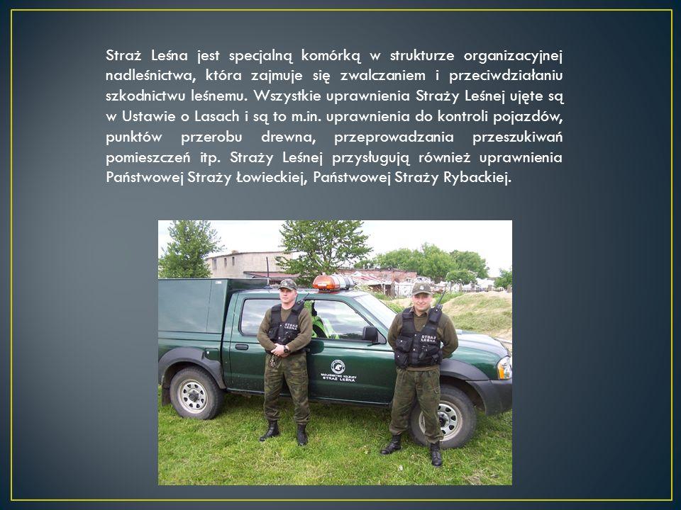 Straż Leśna jest specjalną komórką w strukturze organizacyjnej nadleśnictwa, która zajmuje się zwalczaniem i przeciwdziałaniu szkodnictwu leśnemu. Wsz