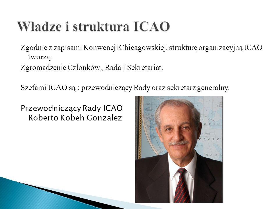 Zgodnie z zapisami Konwencji Chicagowskiej, strukturę organizacyjną ICAO tworzą : Zgromadzenie Członków, Rada i Sekretariat. Szefami ICAO są : przewod