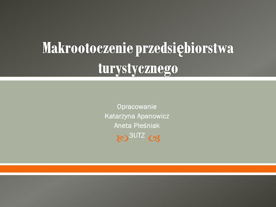 Opracowanie Katarzyna Apanowicz Aneta Pleśniak 3UTZ