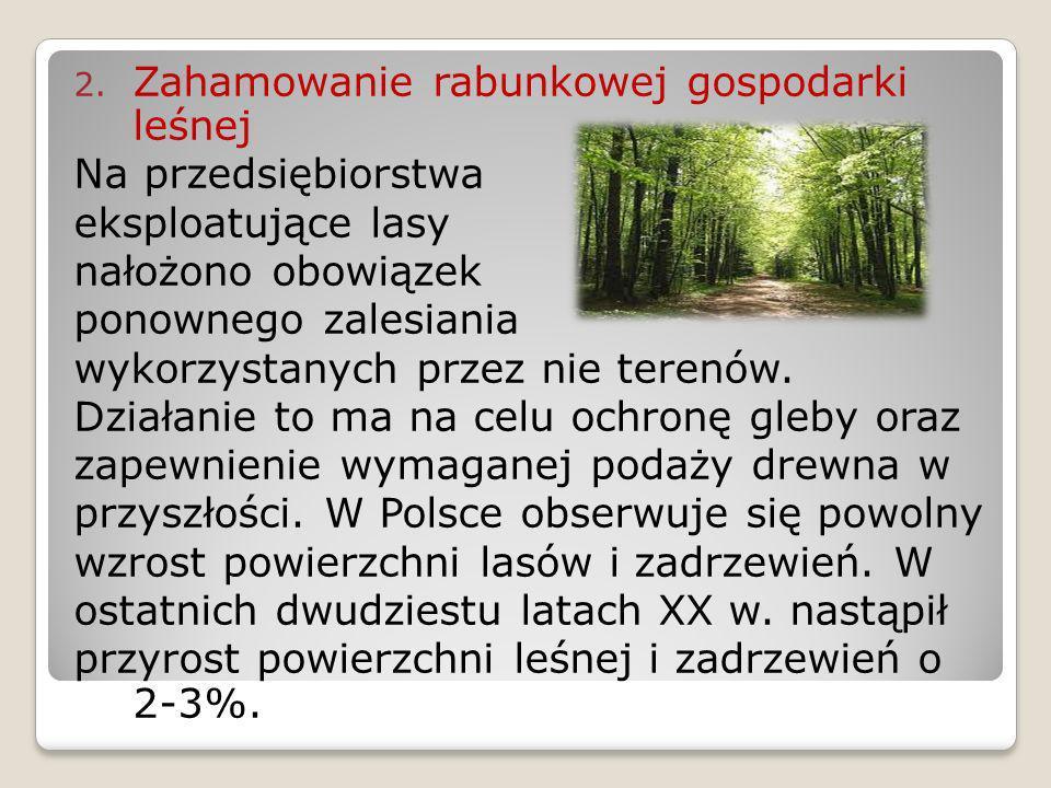2. Zahamowanie rabunkowej gospodarki leśnej Na przedsiębiorstwa eksploatujące lasy nałożono obowiązek ponownego zalesiania wykorzystanych przez nie te