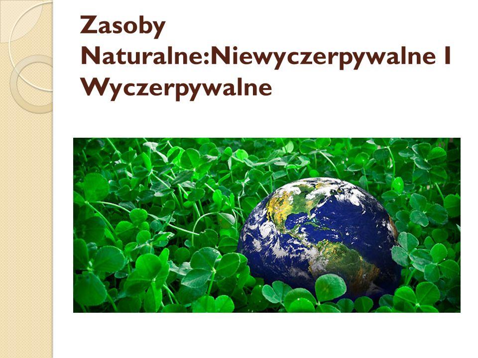 Zasoby naturalne - wszystkie użyteczne elementy środowiska, które człowiek może pozyskiwać.