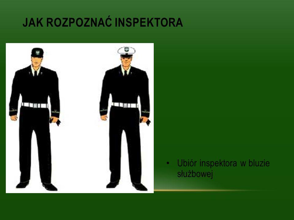 Ubiór inspektora w bluzie służbowej JAK ROZPOZNAĆ INSPEKTORA
