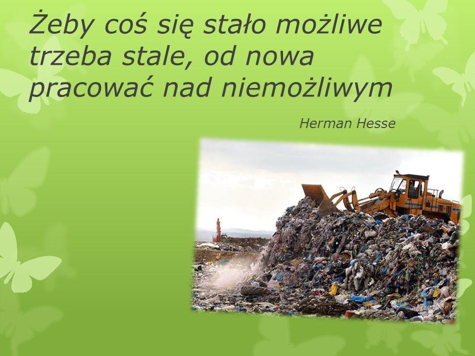 Żeby coś się stało możliwe trzeba stale, od nowa pracować nad niemożliwym Herman Hesse