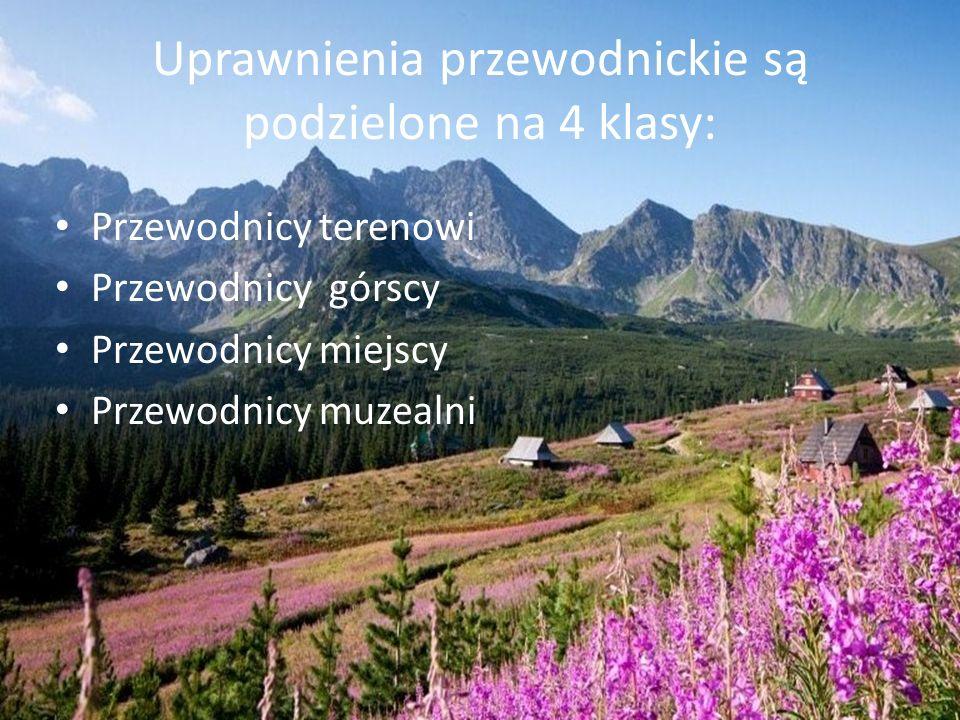 Uprawnienia przewodnickie są podzielone na 4 klasy: Przewodnicy terenowi Przewodnicy górscy Przewodnicy miejscy Przewodnicy muzealni