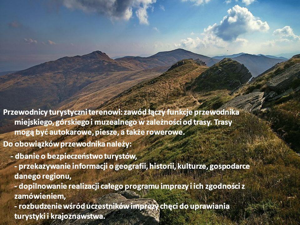 Przewodnicy turystyczni terenowi: zawód łączy funkcje przewodnika miejskiego, górskiego i muzealnego w zależności od trasy. Trasy mogą być autokarowe,