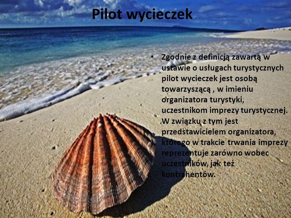Zgodnie z definicją zawartą w ustawie o usługach turystycznych pilot wycieczek jest osobą towarzyszącą, w imieniu organizatora turystyki, uczestnikom