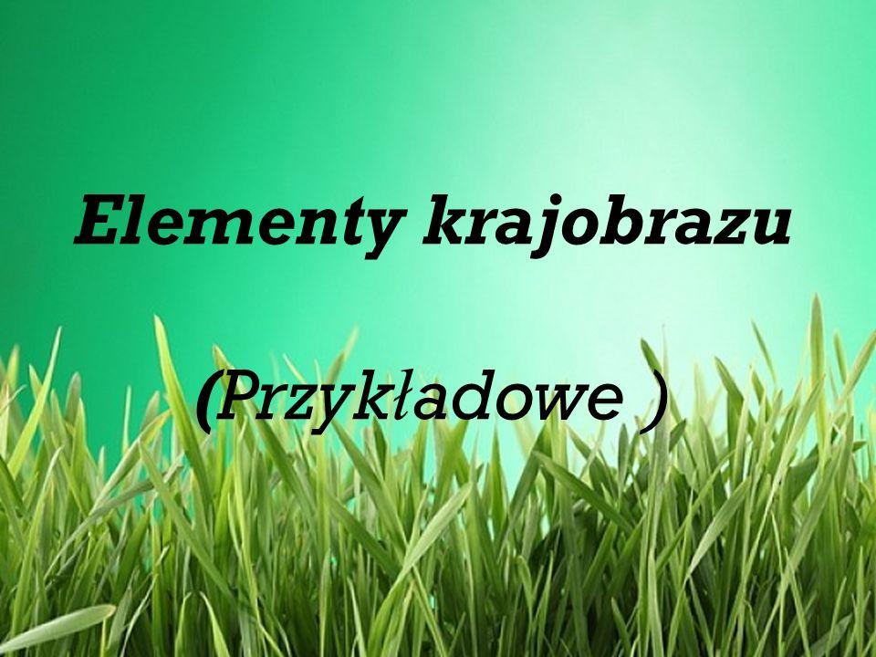Elementy krajobrazu (Przyk ł adowe )