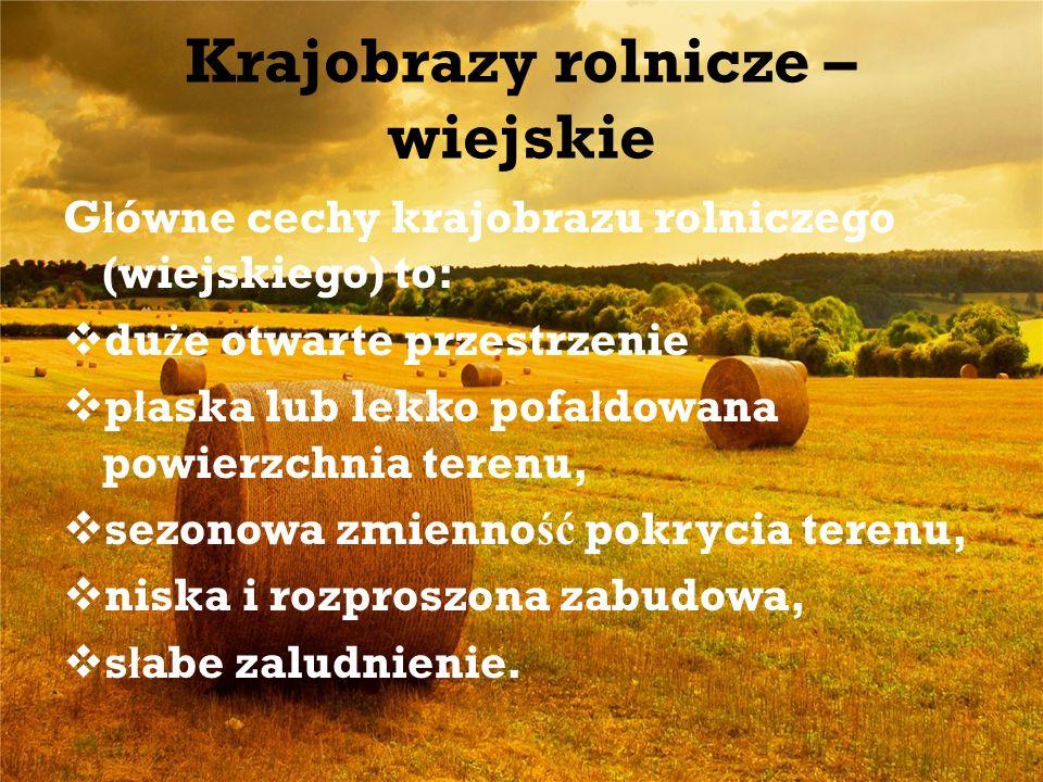 Krajobrazy rolnicze – wiejskie G ł ówne cechy krajobrazu rolniczego (wiejskiego) to: du ż e otwarte przestrzenie p ł aska lub lekko pofa ł dowana powi