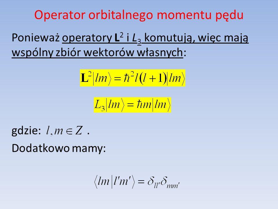 Operator orbitalnego momentu pędu Ponieważ operatory L 2 i L 3 komutują, więc mają wspólny zbiór wektorów własnych: gdzie:. Dodatkowo mamy: