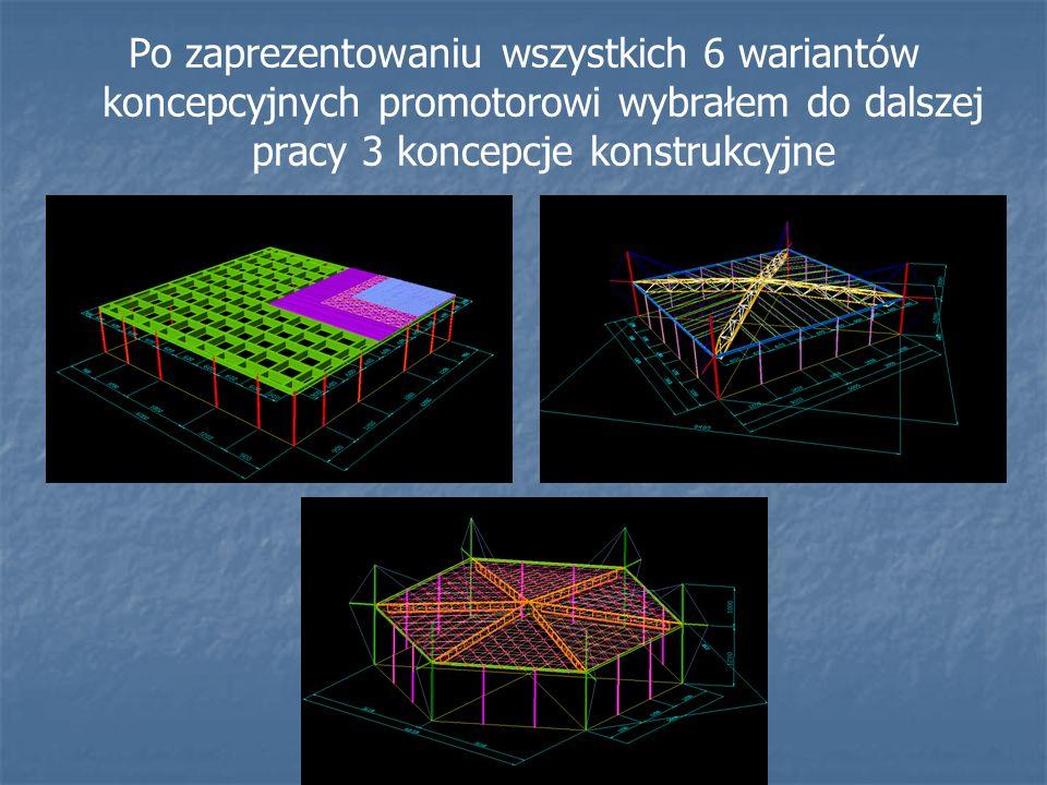 Po zaprezentowaniu wszystkich 6 wariantów koncepcyjnych promotorowi wybrałem do dalszej pracy 3 koncepcje konstrukcyjne