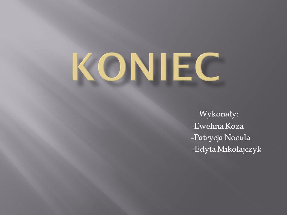 Wykonały: -Ewelina Koza -Patrycja Nocula -Edyta Mikołajczyk