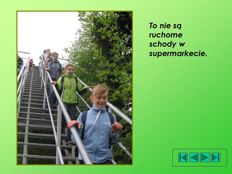 To nie są ruchome schody w supermarkecie.