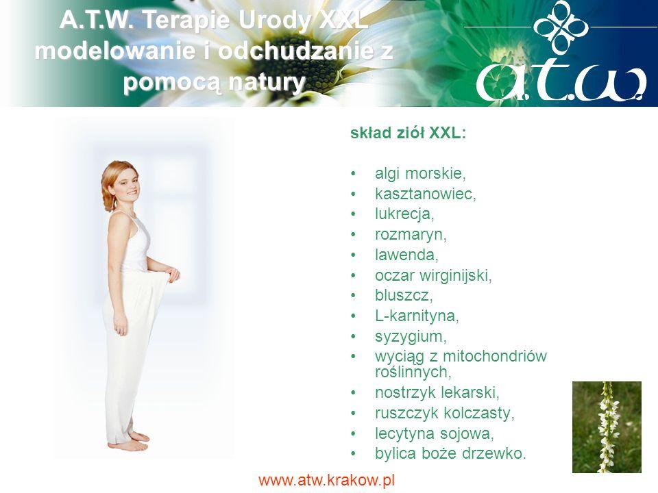 skład ziół XXL: algi morskie, kasztanowiec, lukrecja, rozmaryn, lawenda, oczar wirginijski, bluszcz, L-karnityna, syzygium, wyciąg z mitochondriów roś