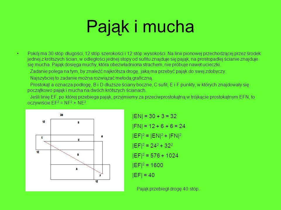 Pająk i mucha Pokój ma 30 stóp długości, 12 stóp szerokości i 12 stóp wysokości. Na linii pionowej przechodzącej przez środek jednej z krótszych ścian