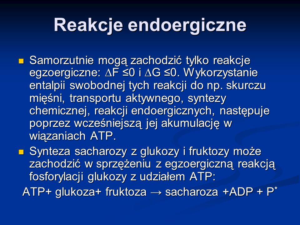 Reakcje endoergiczne Samorzutnie mogą zachodzić tylko reakcje egzoergiczne: F 0 i G 0. Wykorzystanie entalpii swobodnej tych reakcji do np. skurczu mi