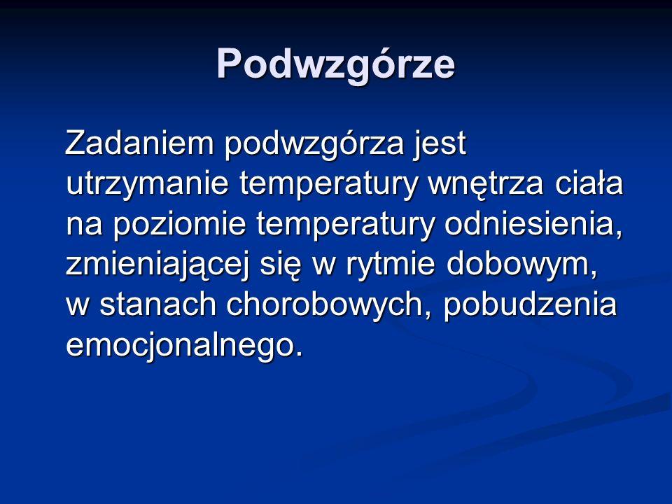 Podwzgórze Zadaniem podwzgórza jest utrzymanie temperatury wnętrza ciała na poziomie temperatury odniesienia, zmieniającej się w rytmie dobowym, w sta