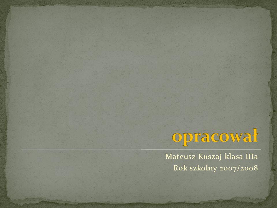 Mateusz Kuszaj klasa IIIa Rok szkolny 2007/2008