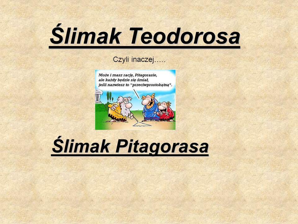 Ślimak Teodorosa Czyli inaczej….. Ślimak Pitagorasa