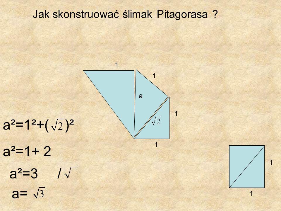 Jak skonstruować ślimak Pitagorasa ? 1 1 1 1 a 1 1 a= a²=3 / a²=1+ 2 a²=1²+( )²