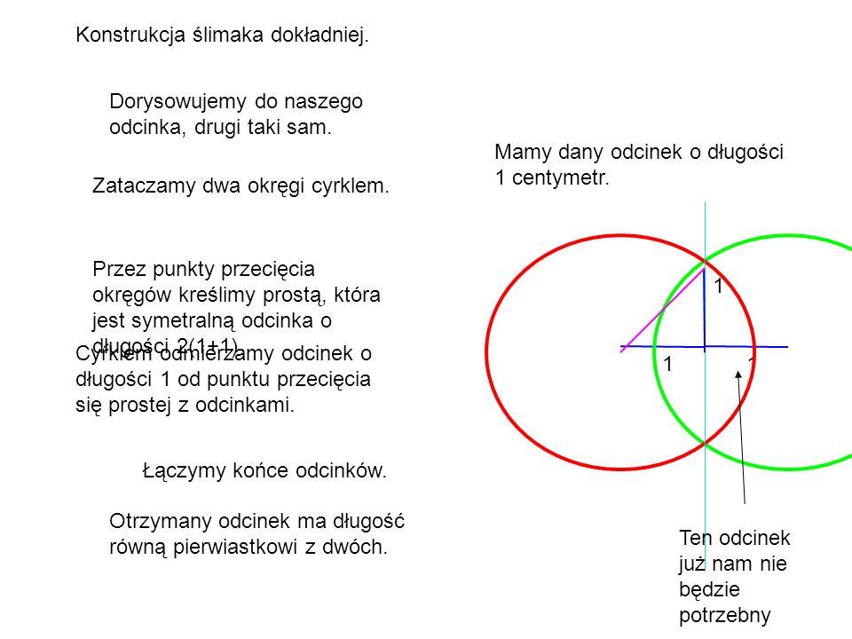 Konstrukcja ślimaka dokładniej. 1 Mamy dany odcinek o długości 1 centymetr. 1 Dorysowujemy do naszego odcinka, drugi taki sam. Zataczamy dwa okręgi cy