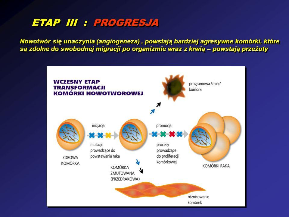 ETAP III : PROGRESJA Nowotwór się unaczynia (angiogeneza), powstają bardziej agresywne komórki, które są zdolne do swobodnej migracji po organizmie wr