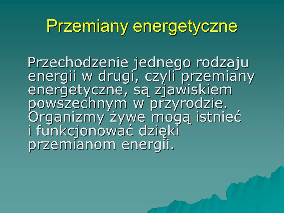Przemiany energetyczne Przechodzenie jednego rodzaju energii w drugi, czyli przemiany energetyczne, są zjawiskiem powszechnym w przyrodzie.