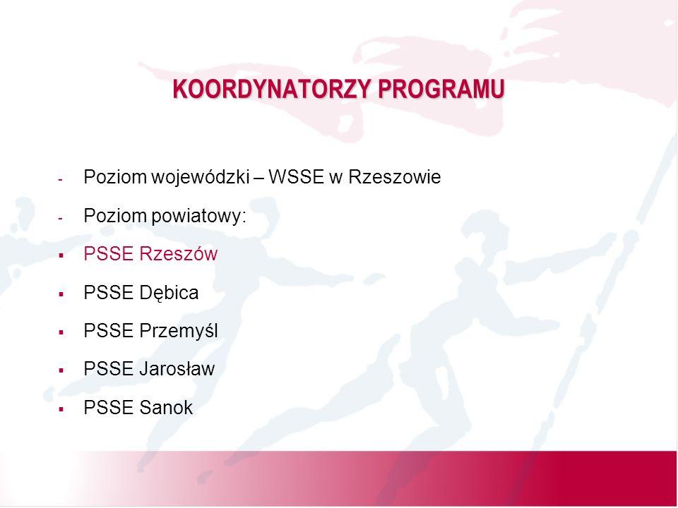 METODYKA REALIZACJI PROGRAMU 1.Przedstawienie oferty programowej dyrektorom szkół.