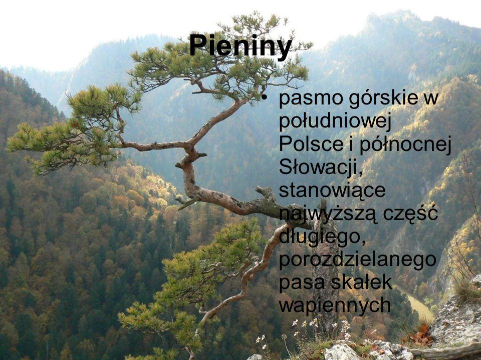 Pieniny pasmo górskie w południowej Polsce i północnej Słowacji, stanowiące najwyższą część długiego, porozdzielanego pasa skałek wapiennych
