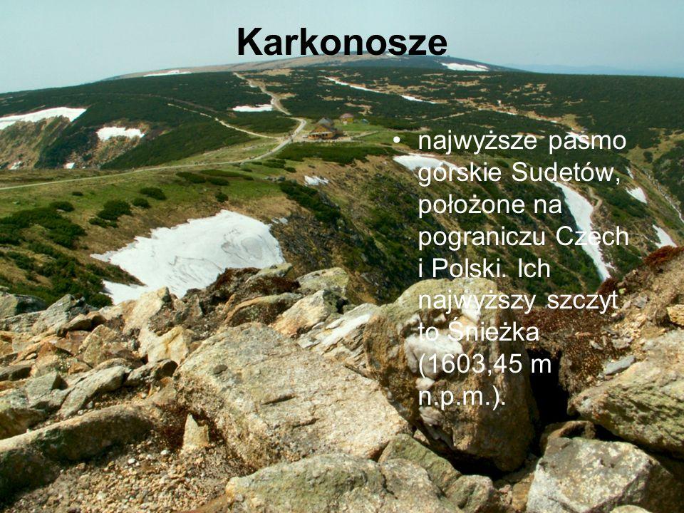 Karkonosze najwyższe pasmo górskie Sudetów, położone na pograniczu Czech i Polski. Ich najwyższy szczyt to Śnieżka (1603,45 m n.p.m.).