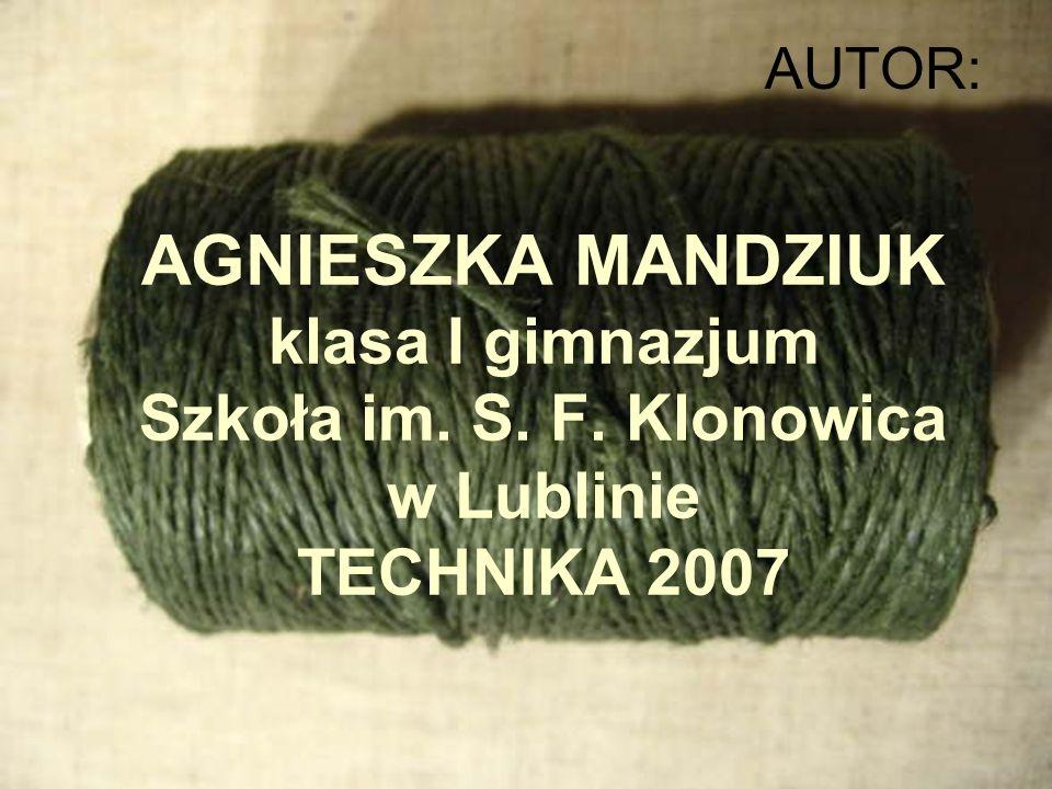 AGNIESZKA MANDZIUK klasa I gimnazjum Szkoła im. S. F. Klonowica w Lublinie TECHNIKA 2007 AUTOR: