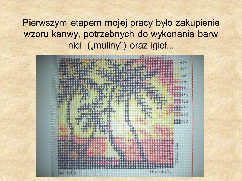 Pierwszym etapem mojej pracy było zakupienie wzoru kanwy, potrzebnych do wykonania barw nici (muliny) oraz igieł...