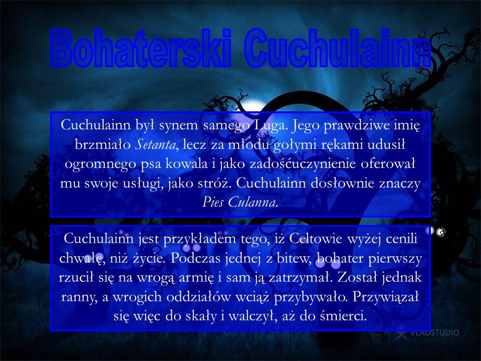 Cuchulainn był synem samego Luga.