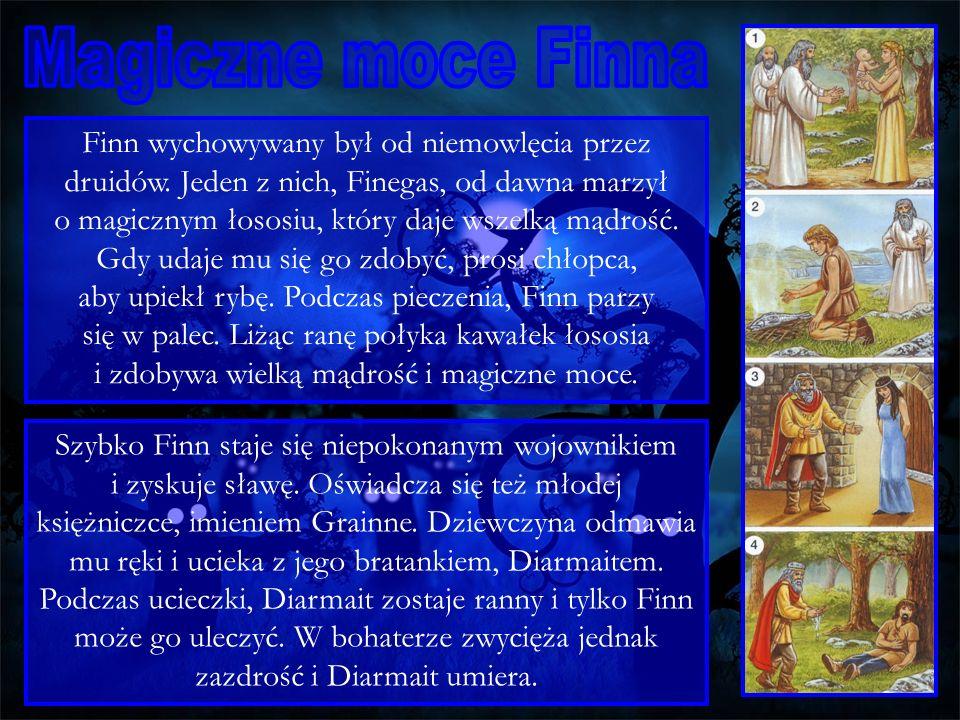 Finn wychowywany był od niemowlęcia przez druidów. Jeden z nich, Finegas, od dawna marzył o magicznym łososiu, który daje wszelką mądrość. Gdy udaje m
