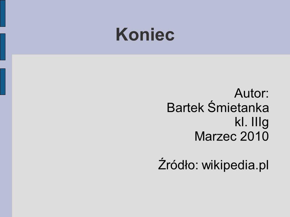 Autor: Bartek Śmietanka kl. IIIg Marzec 2010 Źródło: wikipedia.pl Koniec