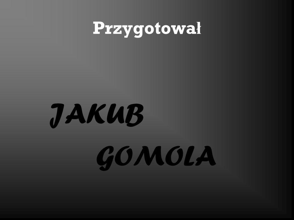 Przygotowa ł JAKUB GOMOLA