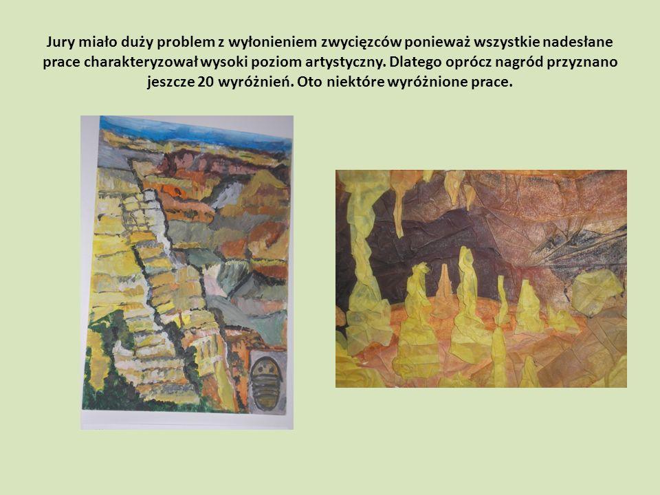 Jury miało duży problem z wyłonieniem zwycięzców ponieważ wszystkie nadesłane prace charakteryzował wysoki poziom artystyczny.