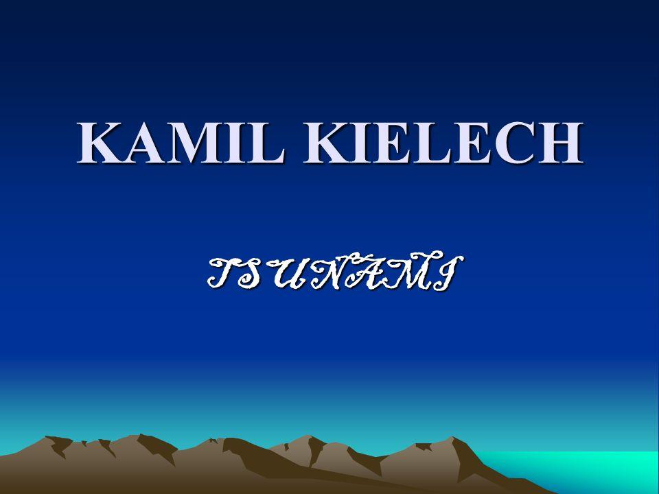 KAMIL KIELECH TSUNAMI